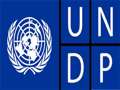 Undp requires Consultant - Copy Editor (Hindi) and Translate (English to Hindi)